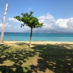 沖縄(名護湾)